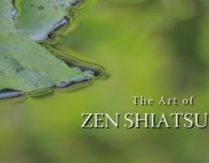 The Art of Shiatsu Highlights